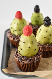 Plant your very own cactus this Earth Day with these adorable and eco-friendly gluten free Succulent Cupcakes!